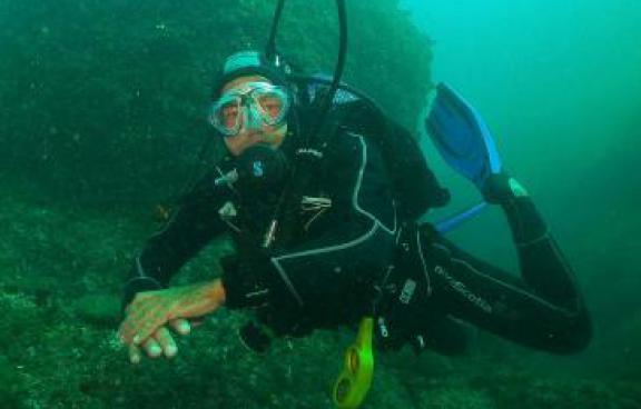 Open Water Diver estándar